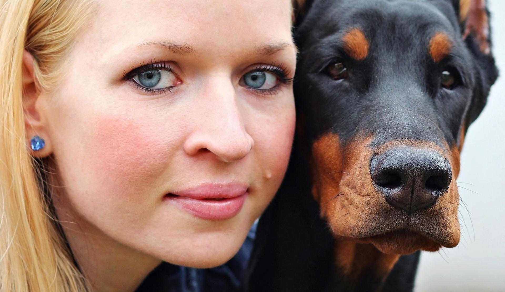 Proteza dla psa